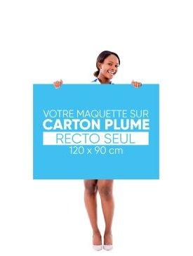 Panneau Carton Plume L ¾ / 01