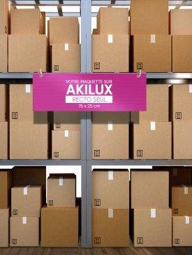 Panneau Akilux M ⅓ / 01