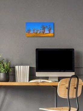 Tableau Alubond 50 x 25 cm