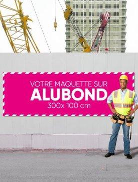 Panneau Alubond XXL ⅓ / 04