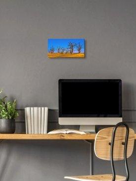 Tableau Alubond 40 x 20 cm