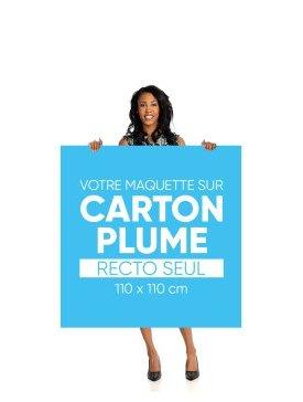 Panneau Carton Plume L Carré 04