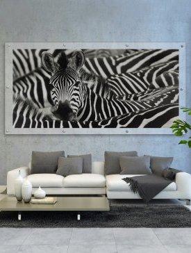 Tableau Plexi 240 x 120 cm