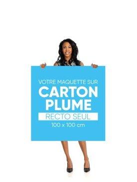 Panneau Carton Plume L Carré 03