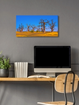 Tableau Alubond 80 x 40 cm