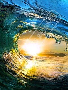 Ocean & Surf